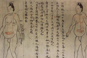 腹の虫がおさまらない」の「虫」って何だろう? | 日本語教師の広場